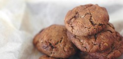 carob coconut biscuits vegan