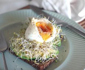 organic miso toast