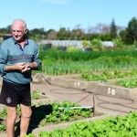 Our farmers: Dennis Bagnall at Dapto Community Farm