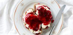 plum jelly toast organic